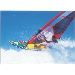 Windsurfer, MAXI plakat...