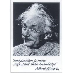 Albert Einstein, MAXI...