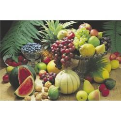 Frisk Frugt (Frutta...