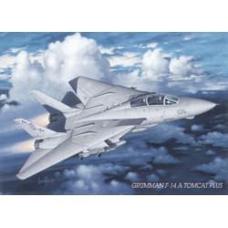 Grumman F-14 Tomcat -...