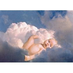 Baby i skyerne, MAXI plakat...