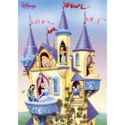 Prinsessernes slot...