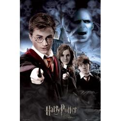 Harry Potter og...