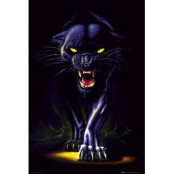 Sort panter (Black...