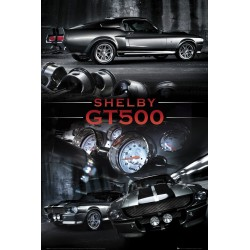 Ford Shelby GT500, MAXI...