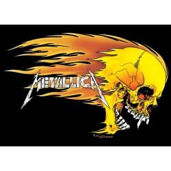 Metallica, Skull, MAXI...