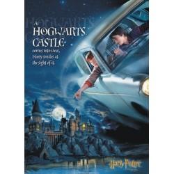 Harry Potter, Hogwarts...