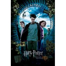Harry Potter , Fangen fra...