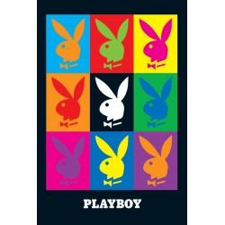 Playboy,  Pop-Art, MAXI...