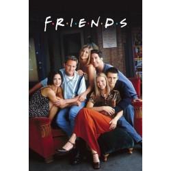 Venner - Friends