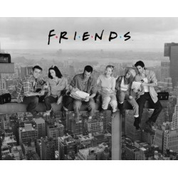Friends / Venner (Midi plakat)