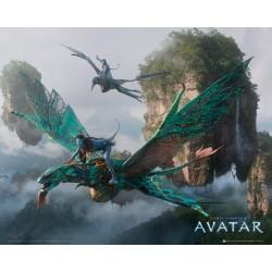 Avatar (Midi plakat)