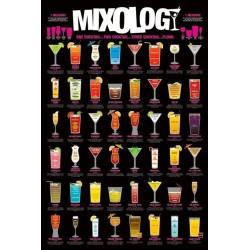 Mixology - 48 drinksopskrifter