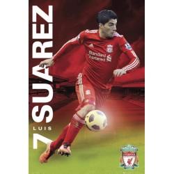 Luis Suarez - Liverpool F.C.