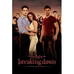 The Twilight Saga: Breaking...