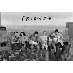 Friends / Venner