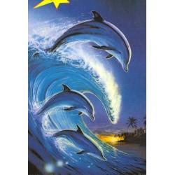 Delfiner rider på bølgerne
