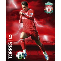 Fernando Torres - Liverpool...