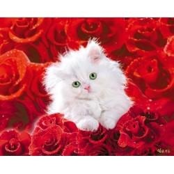 Kat og roser (Midi plakat)