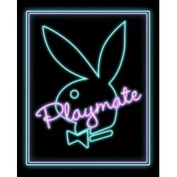 Playmate - Neon (Midi plakat)