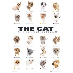 Katten - 18 katteracer...