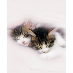 Sovende killinger (Midi...
