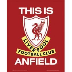 Liverpool F.C. - This is...
