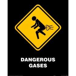 Dangerous Gases (Midi plakat)