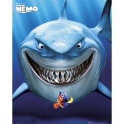 Find Nemo (Midi plakat)