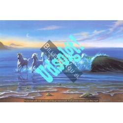 Wild Waters - Heste i...